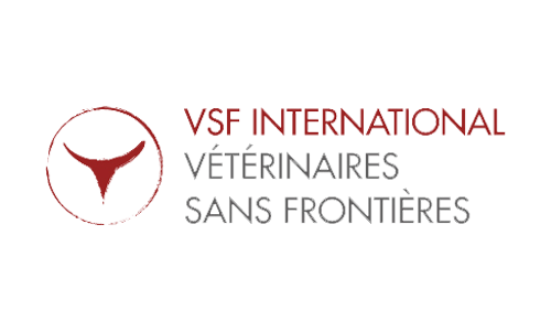 VSFi Version Web SF